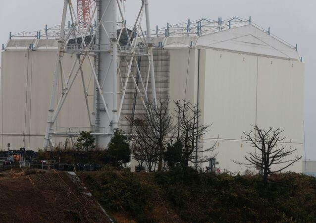 A building covering the Unit 1 reactor is removed by a crane at the Fukushima Dai-ichi nuclear power plant in Okuma, Fukushima Prefecture, northeastern Japan on November 12, 2014