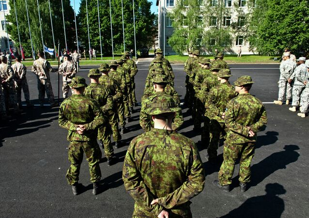 Soldiers from the Finnish Army stand in formation during the Saber Strike 2014 opening ceremony here, June 9, 2014