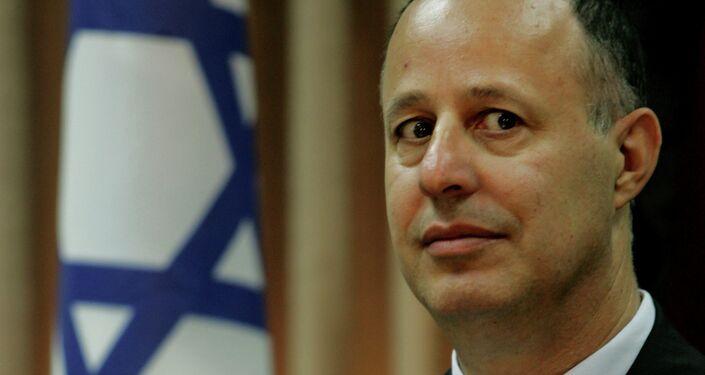 Likud MP Tzachi Hanegbi.