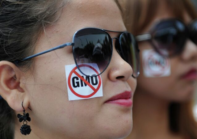 Greenpeace activists take part in a protest march against Monsanto in Bangalore on May 24, 2014.