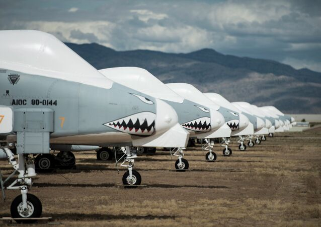 Fairchild Republic A-10 Thunderbolt II aircraft are seen stored in the boneyard at the Aerospace Maintenance and Regeneration Group on Davis-Monthan Air Force Base in Tucson, Arizona