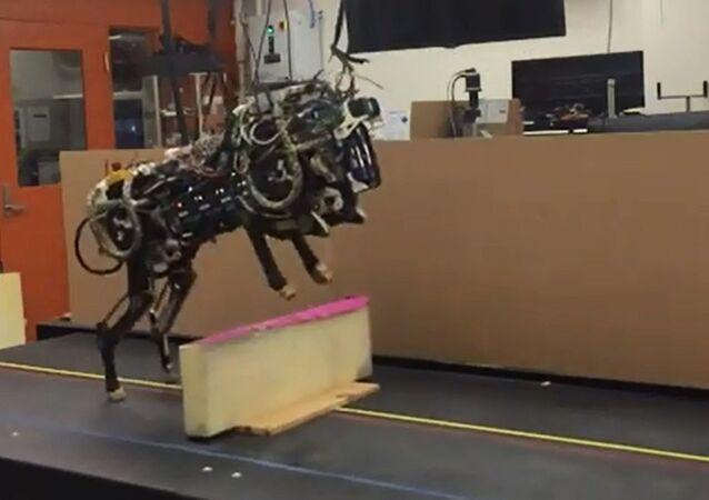 MIT Cheetah-Robot