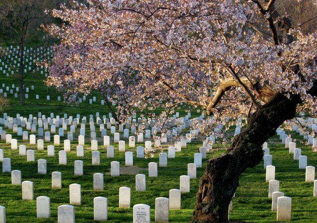 Arlington Cemetery Refuses to Bury Soldier Killed in Black Hawk Crash