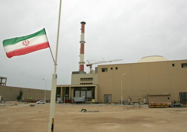 Iranian flag outside the building housing the reactor of the Bushehr nuclear power plant. (File)