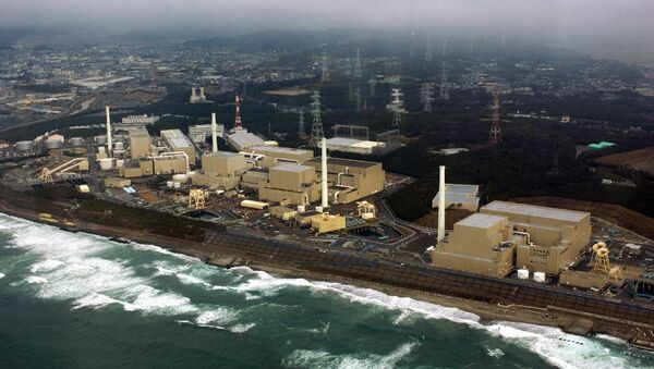 This aerial view, taken on February 2005, shows Chubu Electric Power's Hamaoka nuclear power plant at Omaezaki city in Shizuoka prefecture, 200km west of Tokyo - Sputnik International