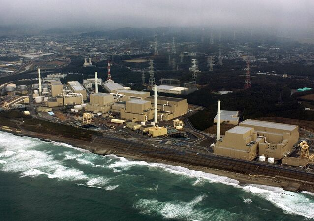 This aerial view, taken on February 2005, shows Chubu Electric Power's Hamaoka nuclear power plant at Omaezaki city in Shizuoka prefecture, 200km west of Tokyo