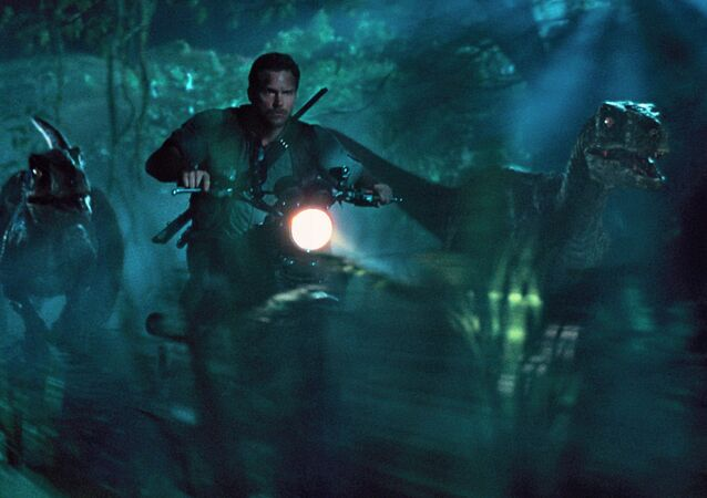 This photo, provided by Universal Pictures, shows Chris Pratt as Owen leading the raptors on a mission in a scene from the film Jurassic World.