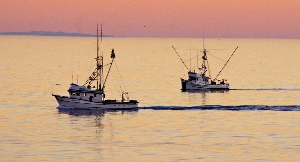 Fishing Boats, Santa Cruz, California