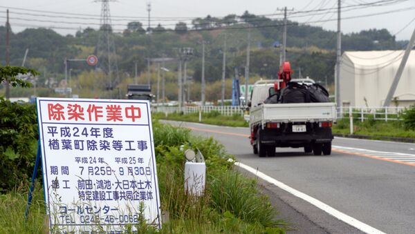 Road at Naraha town in Fukushima prefecture - Sputnik International