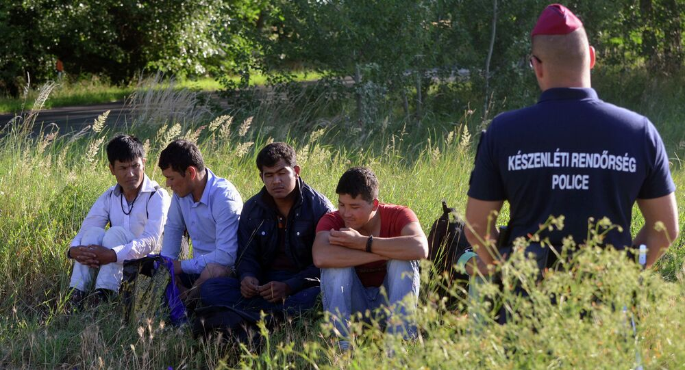 Afghan men are controlled by Hungarian police officers at the Hungarian-Serbian green-border, nearby Asotthalom village on June 18, 2015