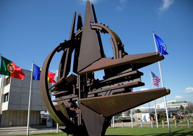 The NATO symbol and flags of the NATO nations outside NATO headquarters in Brussels on Sunday, March 2, 2014