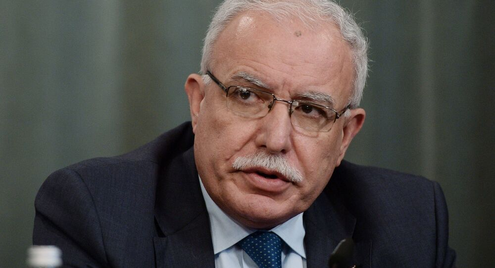 Riyad al-Maliki, Foreign Minister of the Palestinian National Authority