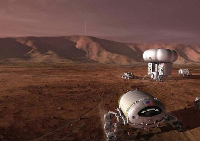 As NASA considers the possibility of a manned mission to the Mars, it may, first, send another lifeform: microscopic bacteria which could biologically engineer the planet's ecosystem, making it more habitable.