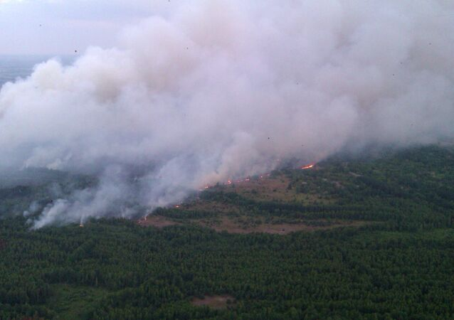In this Monday, June 29, 2015 handout photo made available by the Ukrainian Emergency Situations Ministry press service on Tuesday, June 30, 2015, an aerial view of a forest fire is seen in the Chernobyl area, Ukraine