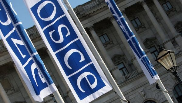 Flags with a logo of OSCE in Vienna - Sputnik International