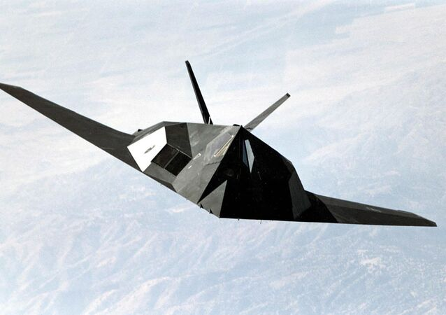 US Air Force F-117 Nighthawk stealth fighter
