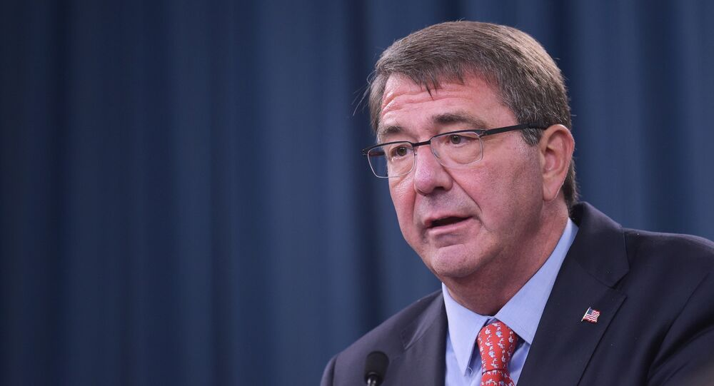 US Defense Secretary Ashton Carter