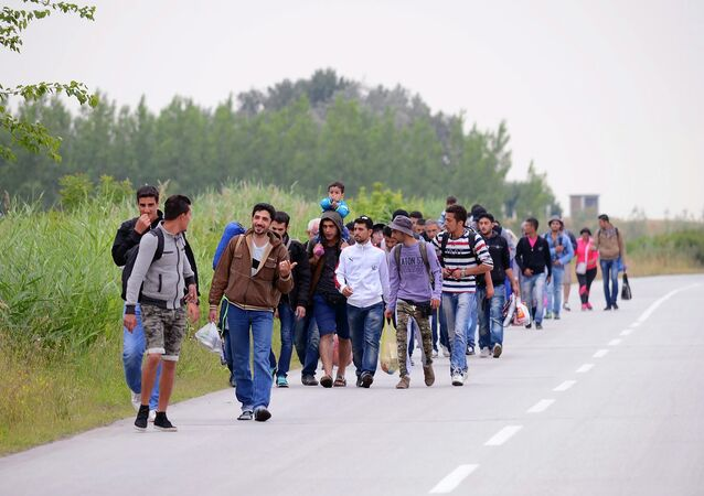 Migrants, .mostly from Syria, headed for EU member Hungary, walk in groups towards Hungary in Kanjiza, North Serbia, near the Hungarian border