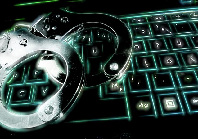 The Russian Interior Ministry was able to foil an attempt to rob practically all of Russia's banks in a single swipe, the head of Russia's cybernet department (K Unit) said Thursday.