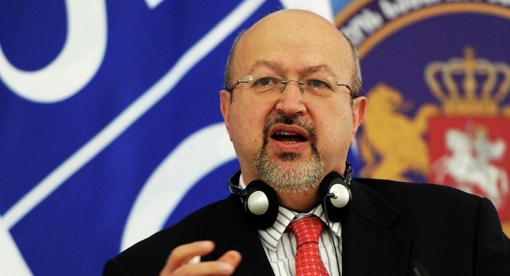 Organisation for Security and Cooperation in Europe (OSCE) Secretary General Lamberto Zannier speaks during a news conference in Tbilisi on March 9, 2015