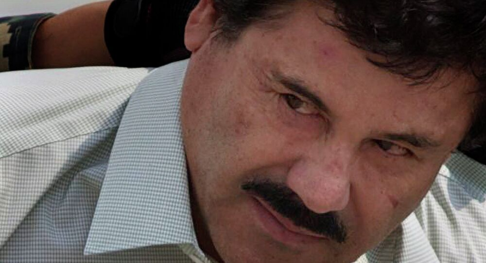 US Knew of Mexican Drug Kingpin El Chapo's Plan to Break Out of Prison