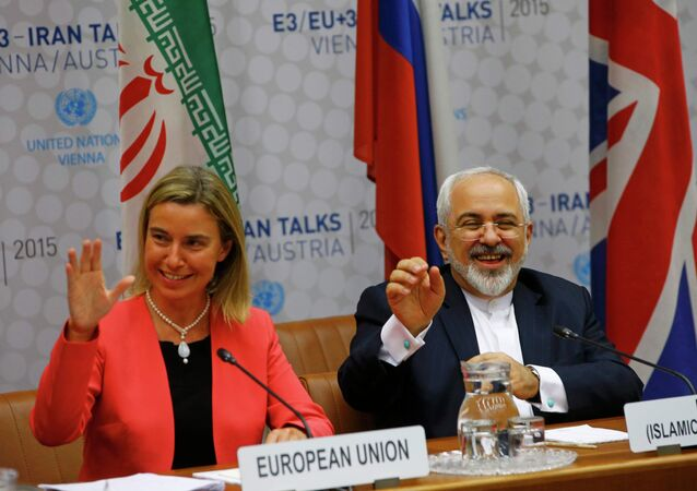 High Representative of the European Union for Foreign Affairs and Security Policy Federica Mogherini and Iranian Foreign Minister Mohammad Javad Zarif (R) react during a plenary session at the United Nations building in Vienna, Austria July 14, 2015.