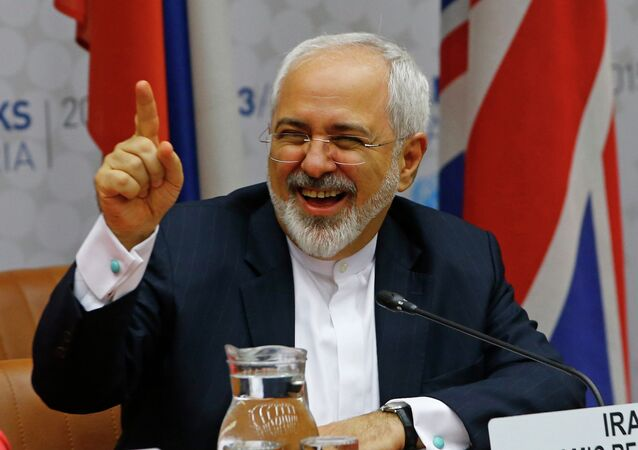 Iranian Foreign Minister Mohammad Javad Zarif reacts during a plenary session at the United Nations building in Vienna, Austria July 14, 2015.