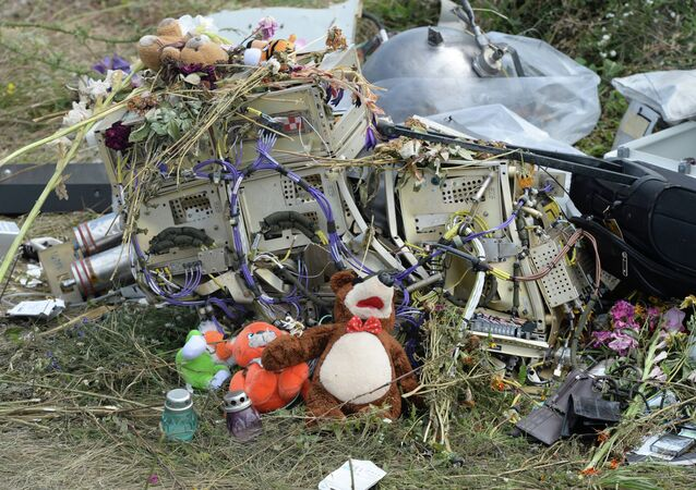 OSCE officials and experts inspect site of Malaysia Airlines Boeing 777 crash
