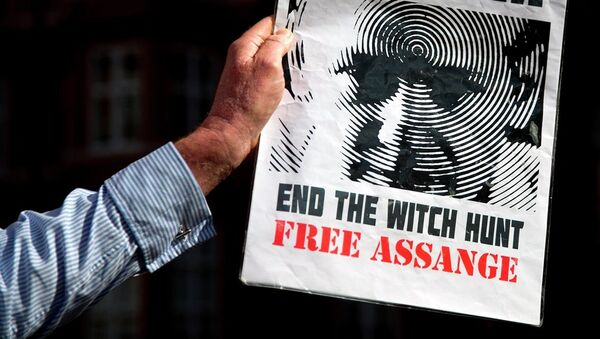 A supporter of Wikileaks founder Julian Assange holds a banner outside the Ecuadorian embassy in London. - Sputnik International