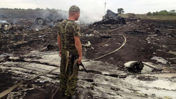 An armed man stands at the site of a Malaysia Airlines Boeing 777 plane crash in the settlement of Grabovo in the Donetsk region, in this July 17, 2014 file picture - Sputnik International