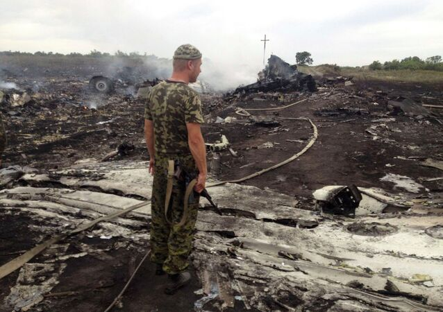 An armed man stands at the site of a Malaysia Airlines Boeing 777 plane crash in the settlement of Grabovo in the Donetsk region, in this July 17, 2014 file picture