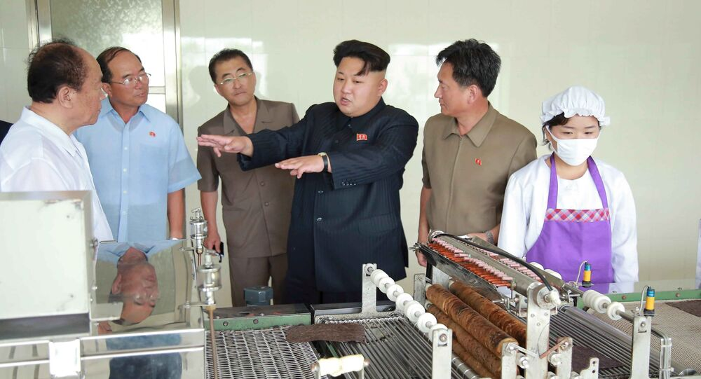 North Korean leader Kim Jong Un visits the Pyongyang Taegyong Laver Processing Factory, in this undated photo released by North Korea's Korean Central News Agency (KCNA) in Pyongyang on July 11, 2015