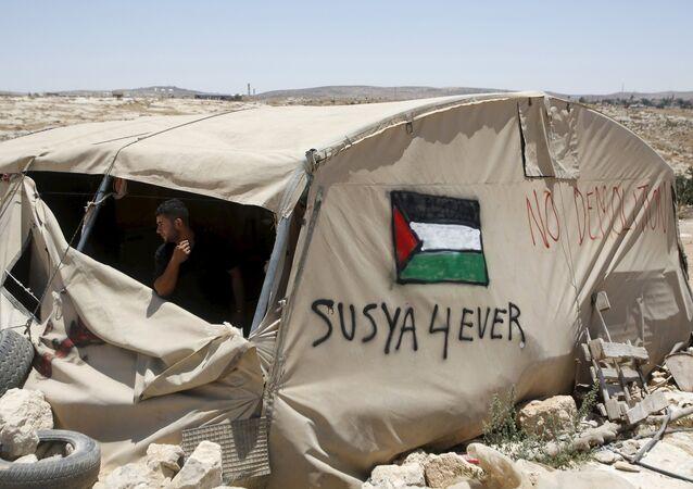 Sysiya Palestine