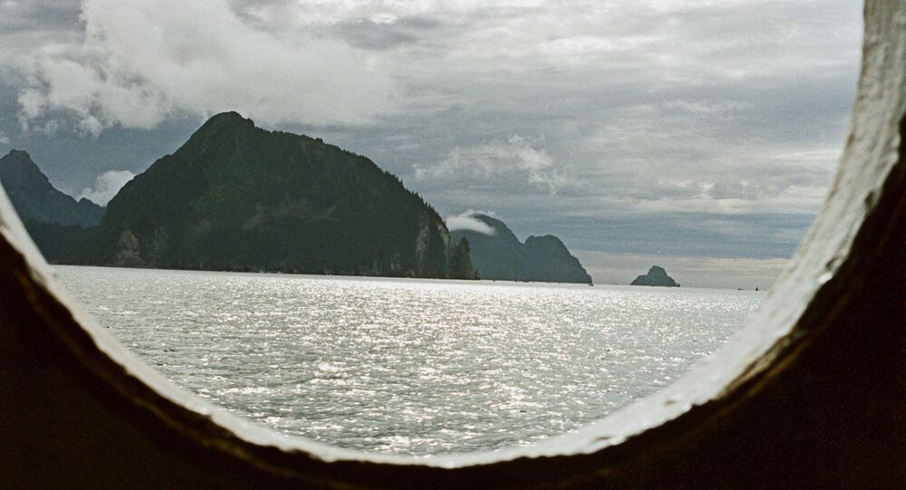 View of Alaska from porthole