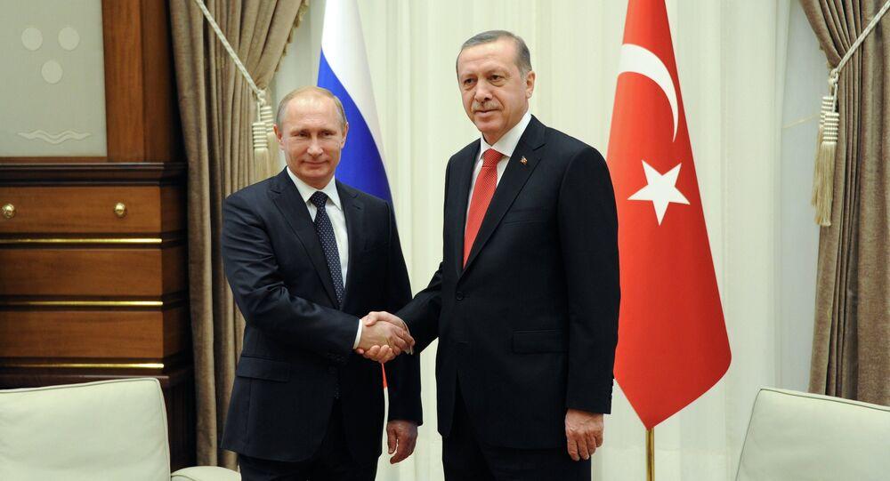 Vladimir Putin's working visit to Turkey