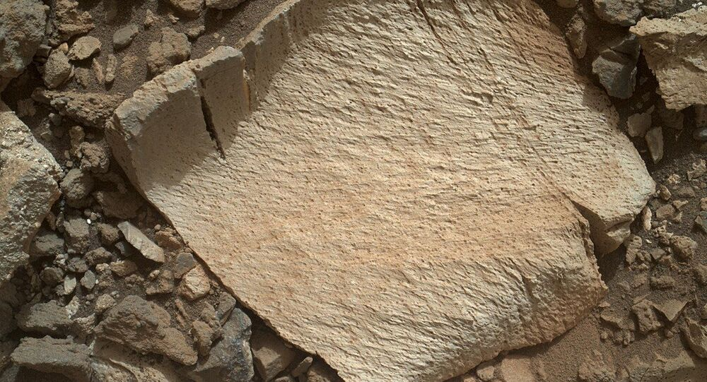 NASA's Curiosity rover photographed this rock fragment, dubbed Lamoose, on Mars.