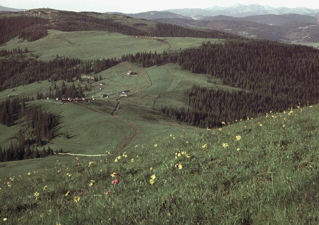 A village in Bukovina