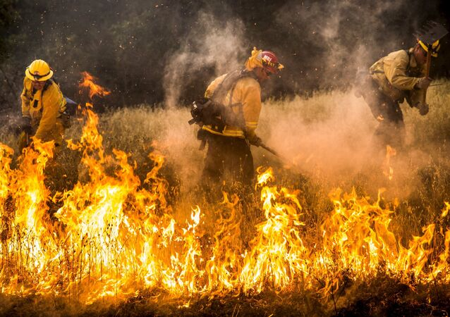 Firefighters work to dig a fire line on the Rocky Fire in Lake County, California July 30, 2015