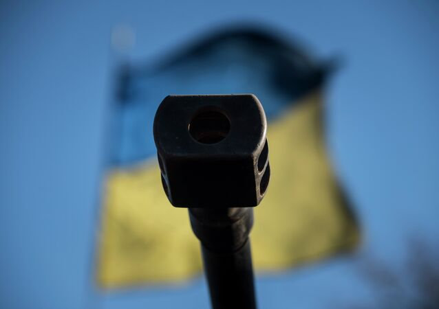 A Ukrainian flag is seen behind a canon near the village of Luhanske, eastern Ukraine, Feb. 24, 2015