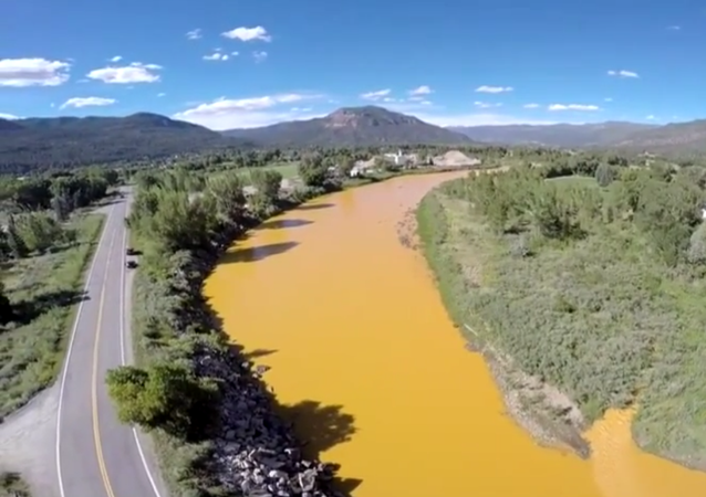 A plume of orange muck from a large mine waste spill in Colorado has drifted about 55 miles downriver
