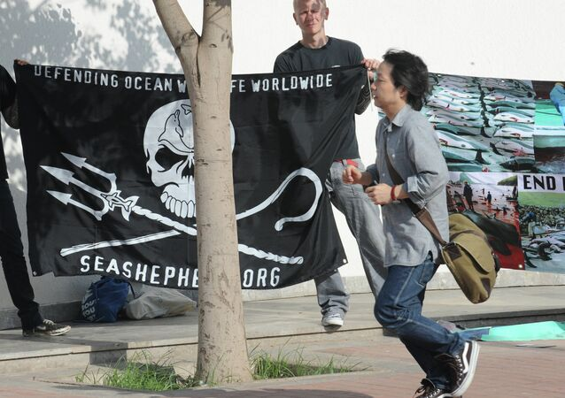 Anti-whaling militants protest on June 21, 2010 outside the venue of International Whaling Commission (IWC) meeting in Agadir