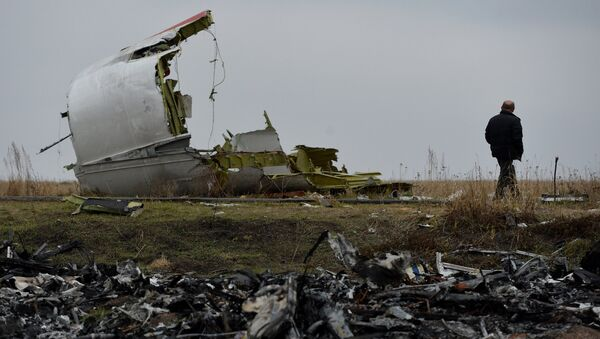 A man at the crash site of the MH 17 Malaysian Boeing that was en route from Amsterdam to Kuala Lumpur. - Sputnik International