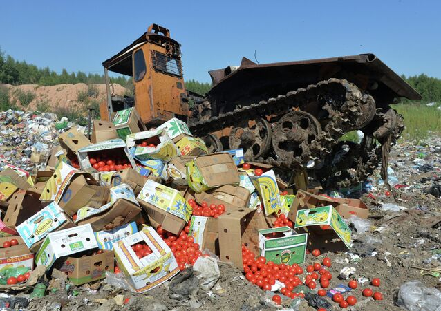 A group of lawmakers from the Communist fraction of Russia's lower house of parliament has introduced a bill aimed at redistributing foodstuffs confiscated under Russia's food embargo to those in need, and as humanitarian aid to conflict zones, the body's press service announced on Thursday.