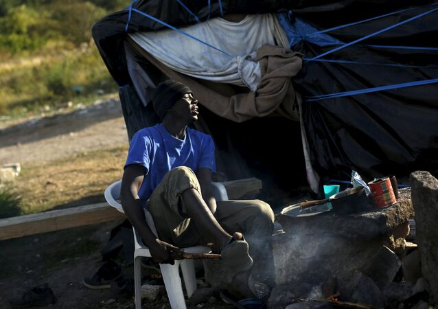Khalifa, from Sudan breaks a branch to cooks at The New Jungle camp in Calais, France, August 9, 2015