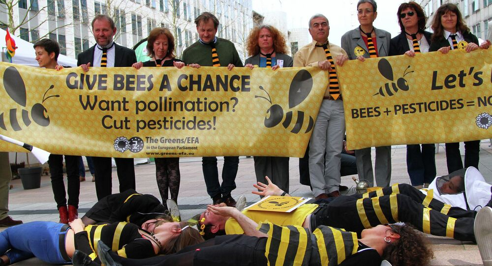 Let's Bee Clear