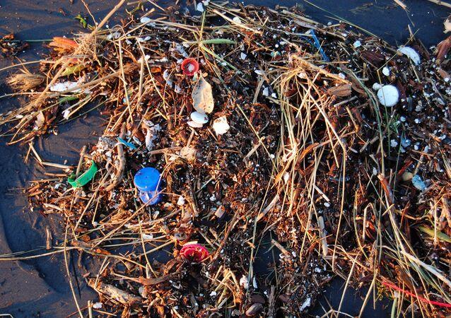 Plastic Ocean.