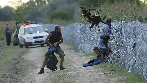 Hungarian police positioned nearby watch as Syrian migrants climb under a fence to enter Hungary at the Hungarian-Serbian border near Roszke, Hungary August 26, 2015 - Sputnik International