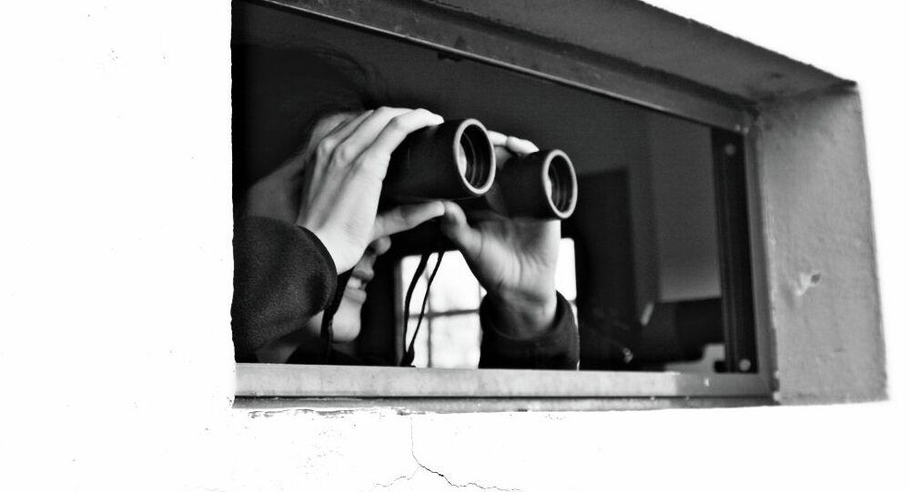She spy