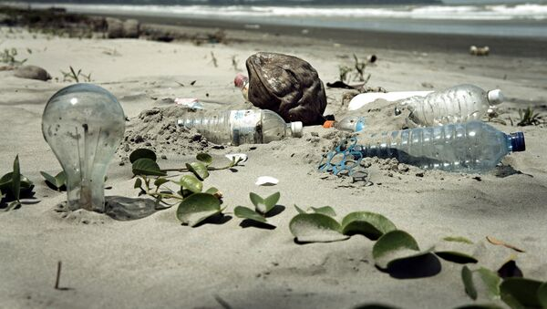 Water Pollution with Trash Disposal of Waste at the Garbage Beach - Sputnik International