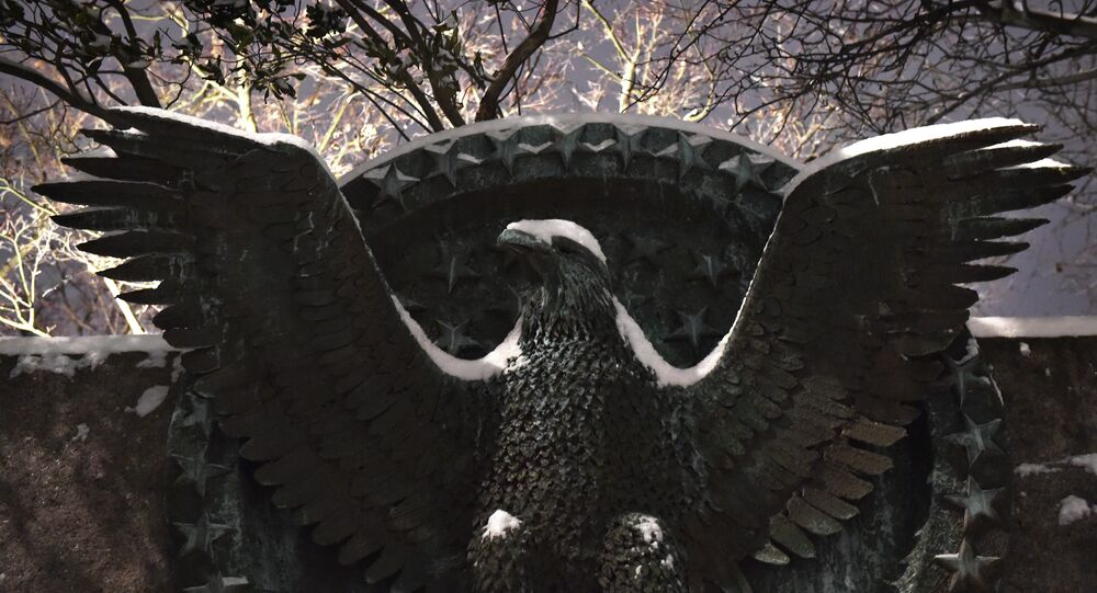 Snow falls on an eagle emblem at the Franklin D. Roosevelt memorial in Washington DC on February 16, 2015